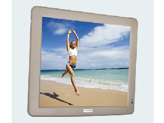 "15 "" Vehicular Fixed LCD Monitor (CM1501)"