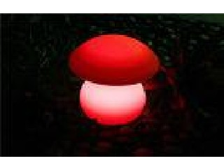 Dimmable Mushroom LED Night Light Long Lasting WITH 100-240 VAC Input 5 DC Output