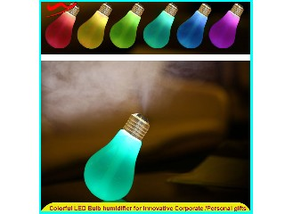 WuYang Brand New PATENT Mini usb led night light bulb air humidifier LE-1001