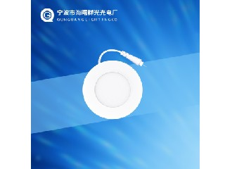 PANEL LED LIGHT QG-PL3W