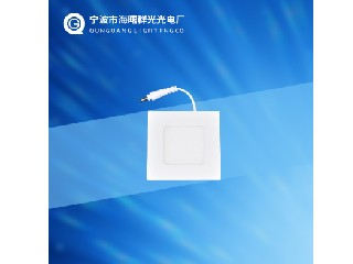 PANEL LED LIGHT QG-PLS3W