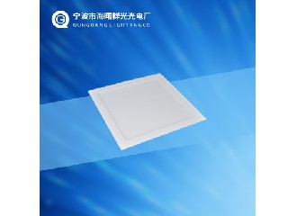 PANEL LED LIGHT QG-PLS24W